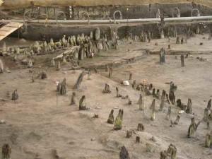 Longola gli scavi di Poggiomarino