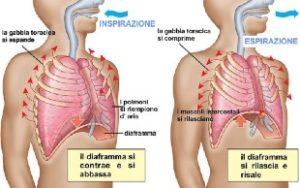 respirazione-diaframmatica