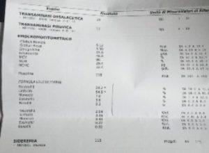 dqgk5l