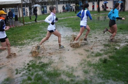 una-fase-del-cross-studentesco-regionale-2016-a-faenza-610x400